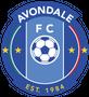 Logo for Avondale FC