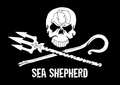 Logo for Sea Shepherd Australia