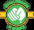Logo for Fistball Federation of Australia