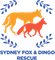 Logo for Sydney Fox and Dingo Rescue